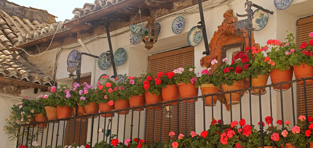 Visit Granada with Spain Seven Degrees